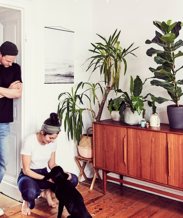 Julia and André with their dog standing next to a mid-century sideboard and potted plants.