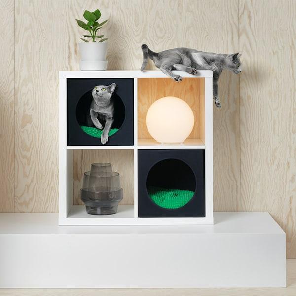 KALLAX Regal mit Katzenkojen zum Schlafen