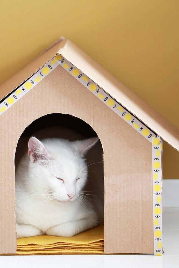 Kattenhuis met kat in de woonkamer