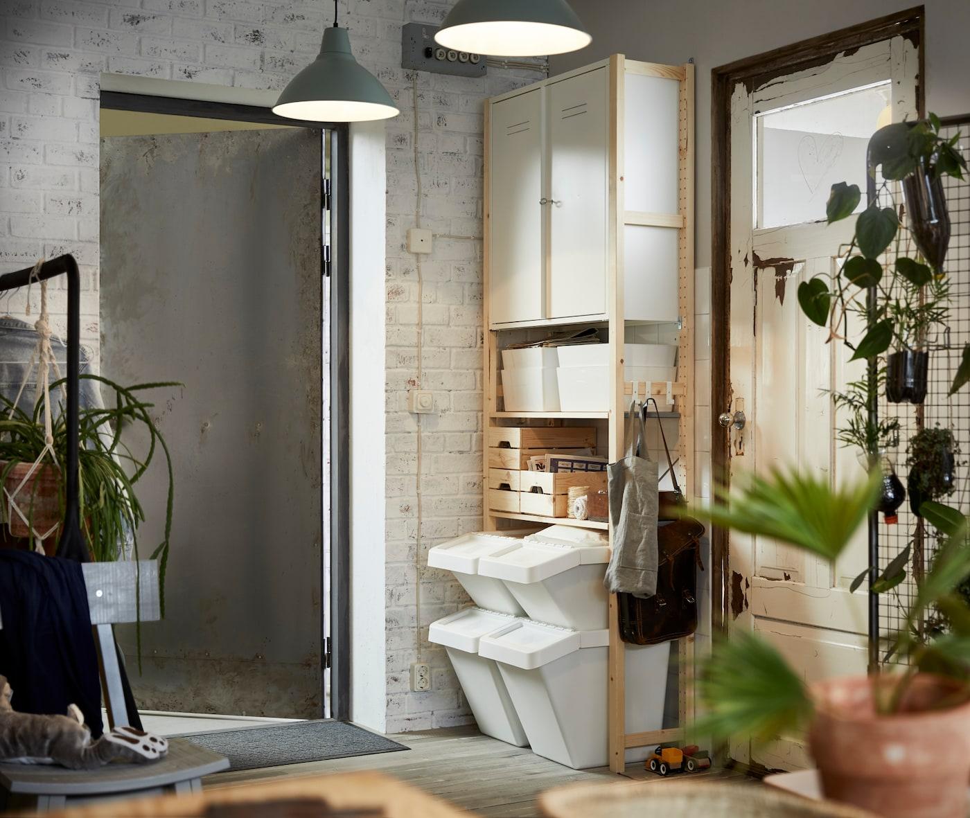 Keller mit weißem Kellerschrank aus Holz, grauer Kellertür & grünen Pflanzen.