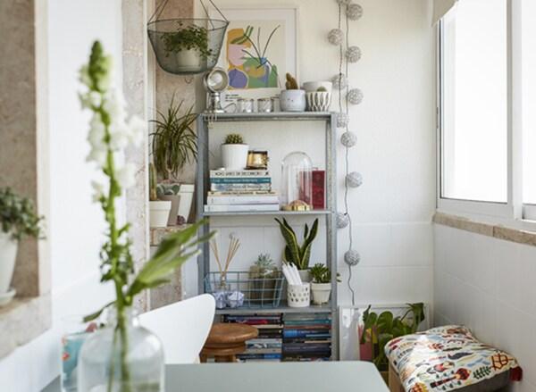 Knjige, biljke i ukrasi izloženi na visokoj otvorenoj polici naspram belog zida.