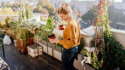 Kobieta z sadzonakami roślin w rękach stojąca na balkonie pełnym roślin.