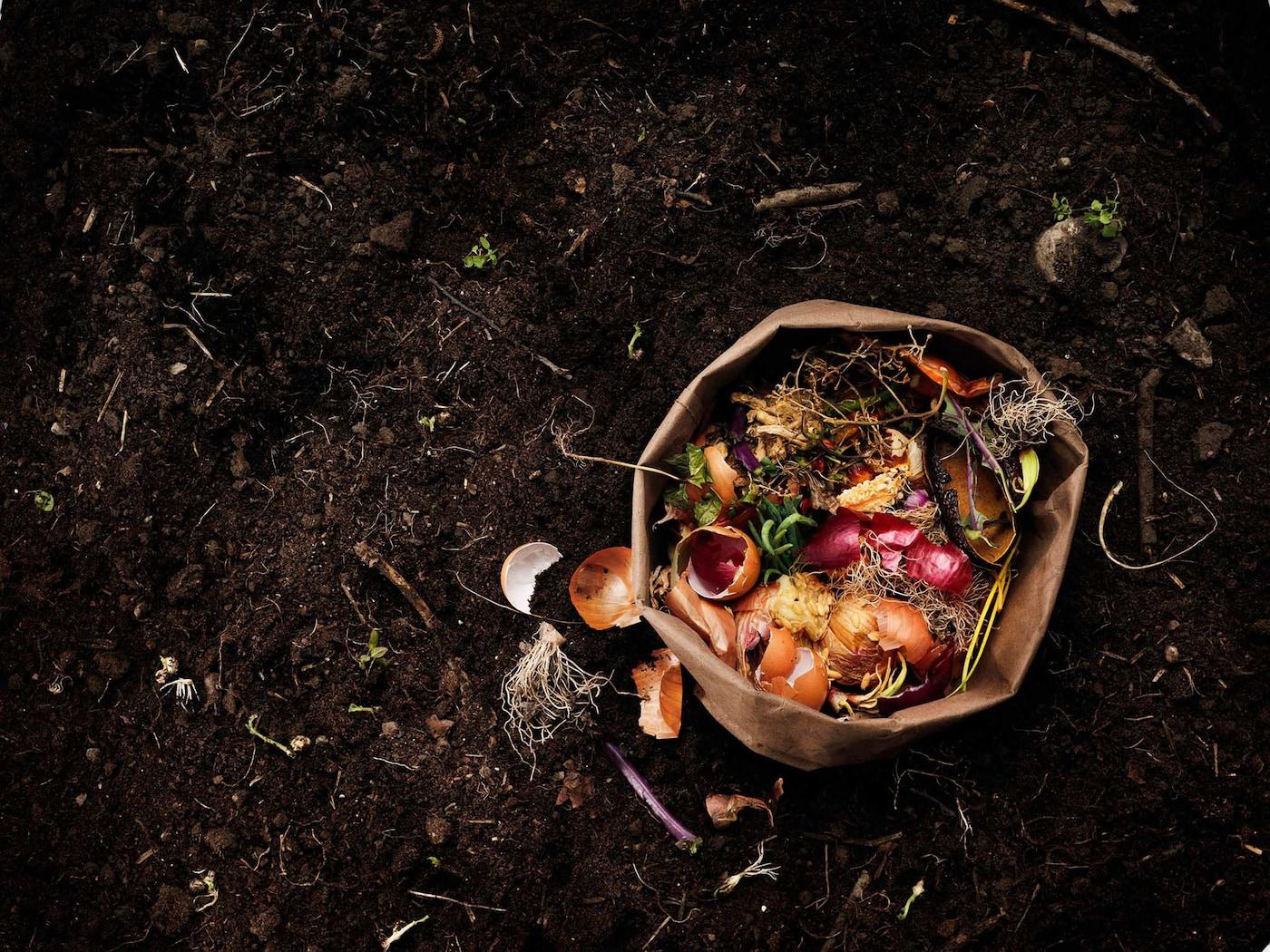 Kompost s papírovým sáčkem bioodpadků z kuchyně.