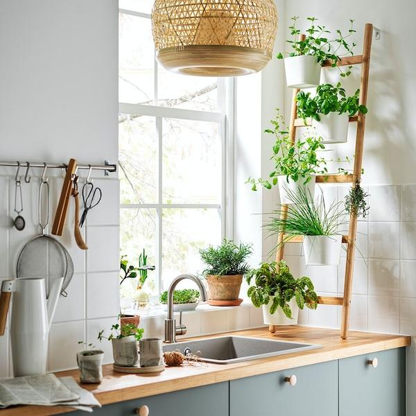 Kuchnia z zielonymi frontami i kwietnikiem pzy oknie.