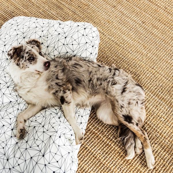 Kudrav pas leži jednom polovinom na velikom tepihu od pletenih prirodnih vlakana, a drugom na dezeniranom jastučiću sa šarama.