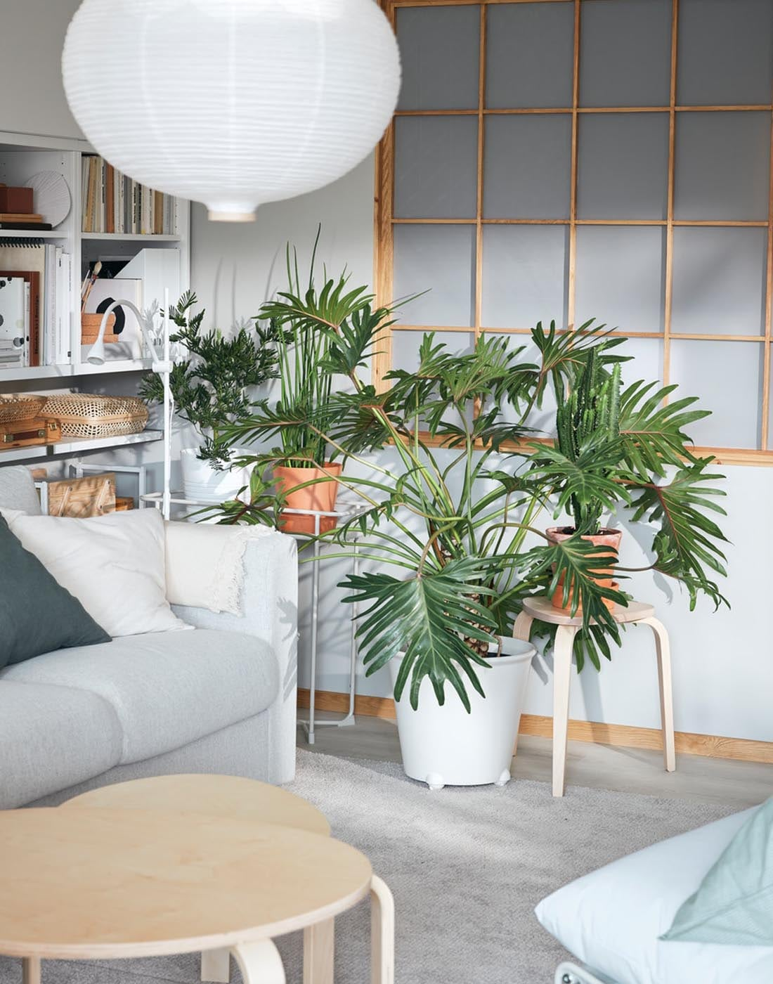 KYRRE jakkara ja KRYDDPEPPAR kukkahylly muodostavat kauniin vihertävän seinän. Riisipaperilamppu täydentää luonnollisen tyylin.