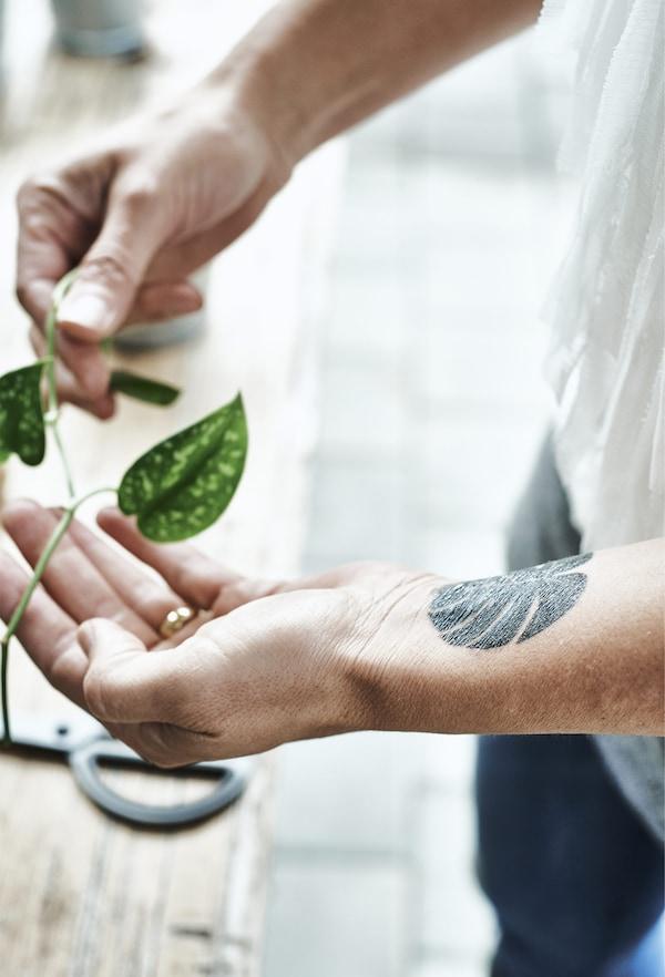 La mano di una donna, con una foglia tatuata sul polso, regge una foglia - IKEA