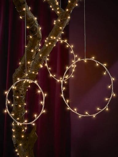 Lámparas con forma de anillo y bombillas de colores alrededor de la rama de un árbol frente a un fondo rojo oscuro.
