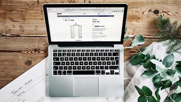 Laptop som står på en bordsskiva i trä med en grön växt på gsidan, på bilden i laptopen syns en sänghimmel.