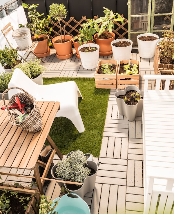 Large potted plants, planting boxes, and gardening necessities are places in the garden area.