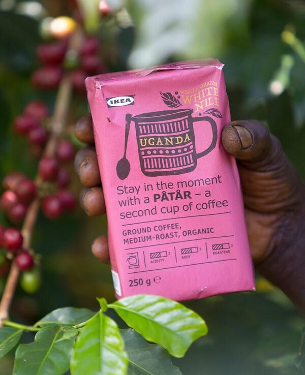 Le café IKEA PÅTÅR 100% Arabica provient de la vallée du Nil blanc. Nous voulons aider les petits producteurs ougandais à se développer.