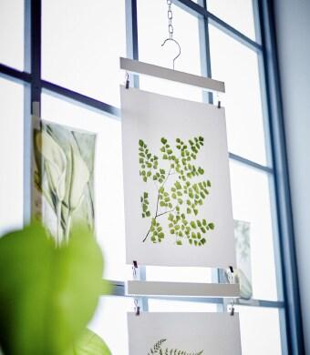Les affiches d'inspiration botanique TVILLING sont suspendues devant la fenêtre.