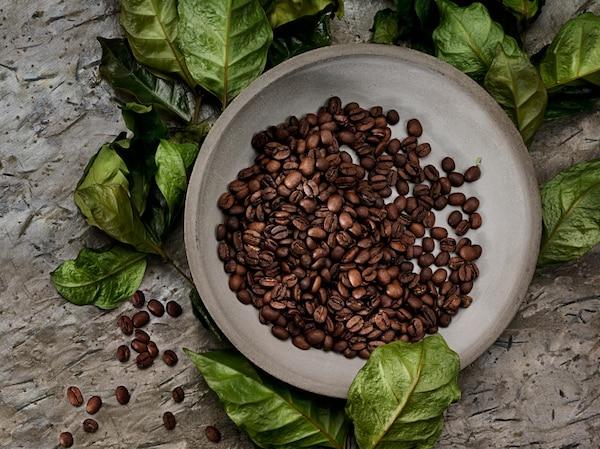 Les grains de café IKEA PÅTÅR proviennent de petites exploitations ou coopératives situées dans des pays comme le Honduras, le Mexique et le Pérou.
