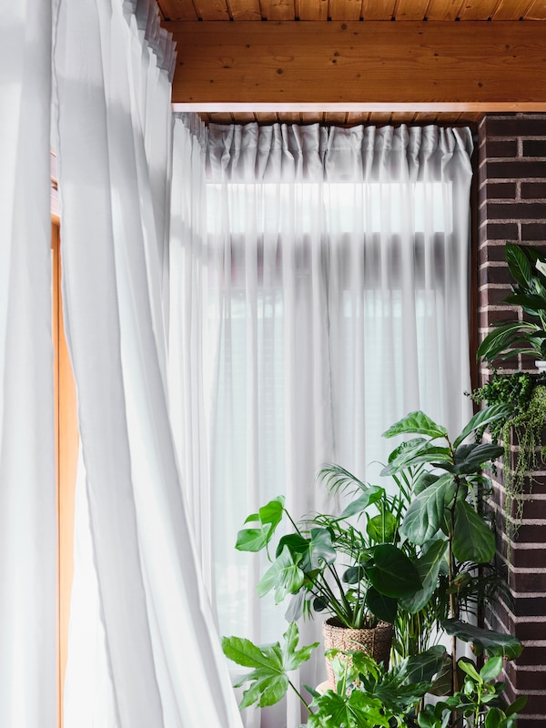 Light streams through a translucent white GUNRID curtain into a room filled with healthy-looking green plants.