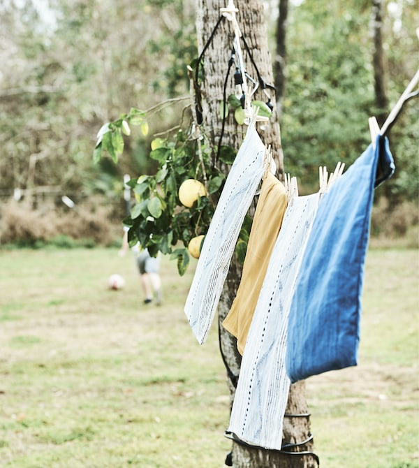 Linens hanging on a line fixed to a tree.