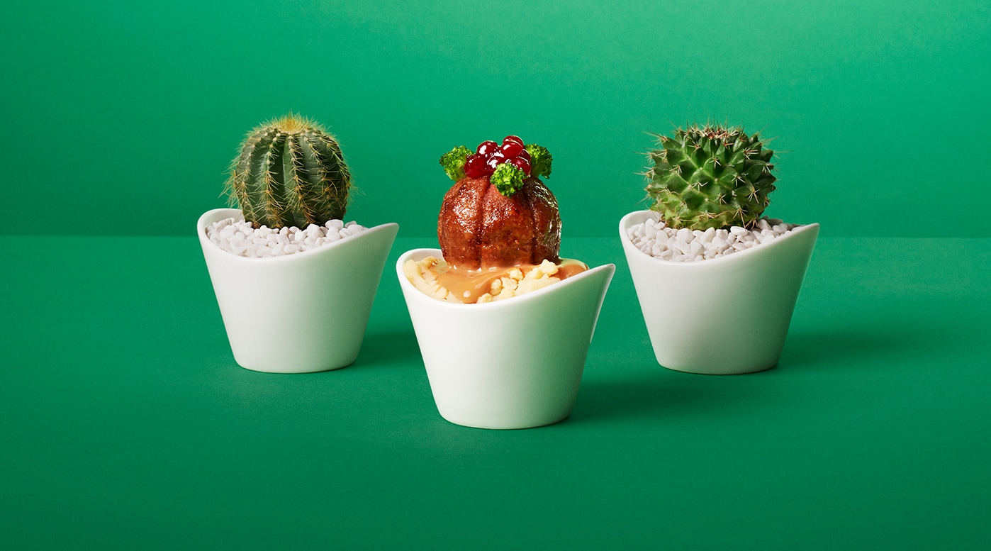 Link to 'The most succulent plant you'll ever eat' - image of a plant ball in between 2 cactus
