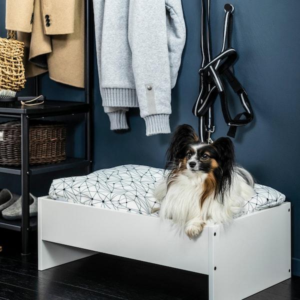 Liten vit/svart hund ligger i en vit hundsäng från serien LURVIG.