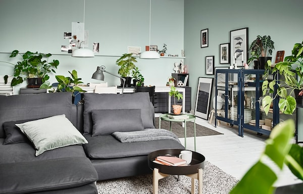 Living room with a dark grey sofa and mint green walls