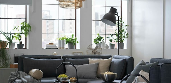 Living room with large windows, sofa, table and floor lamp