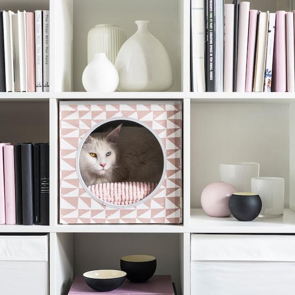 Mačka u šarenoj kućici za mačke, u obliku kocke, na biblioteci; knjige i dekoracije popunjavaju odeljke oko mačke.