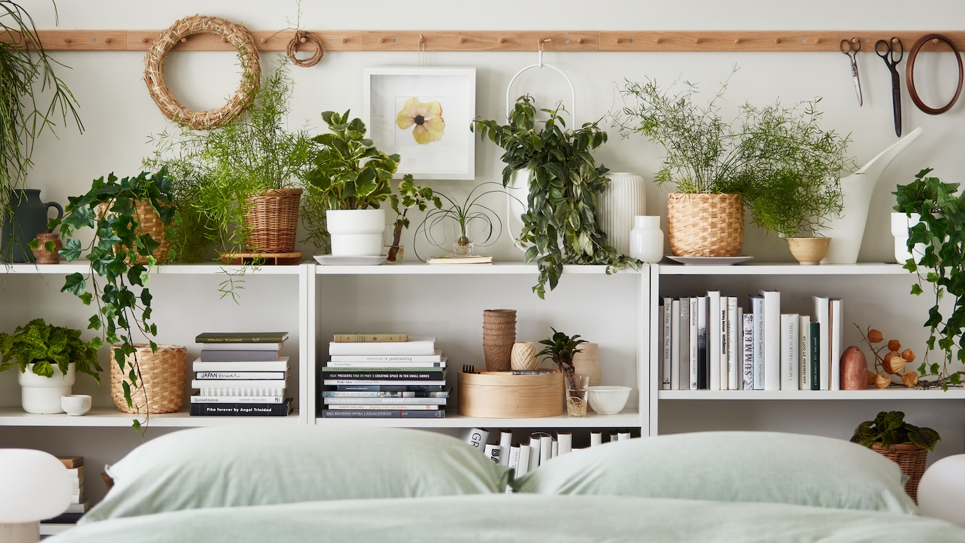 Makuuhuoneessa sängyn päädyssä valkoinen, matala kirjahylly, jonka hyllyillä ja kannella kirjoja sekä viherkasveja erilaisissa ruukuissa.