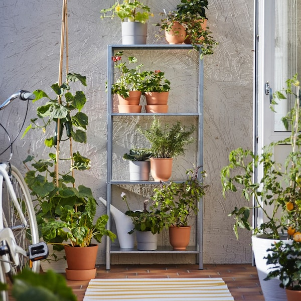 Metal shelving unit with pots and plants