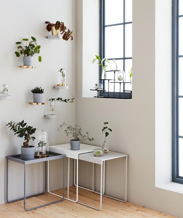 Mit der richtigen Präsentation wie SAMMANHANG Etagiere, können Pflanzen und Zweige genauso dekorativ wirken, wie Blumen in voller Blüte.