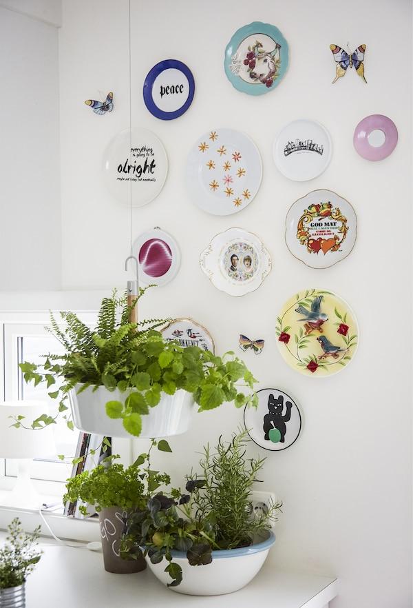 مجموعة من الأطباق والنباتات الملونة على حائط.
