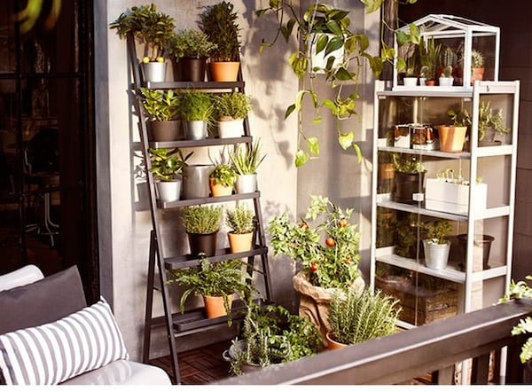 Moestuin op balkon - tips - IKEA wooninspiratie