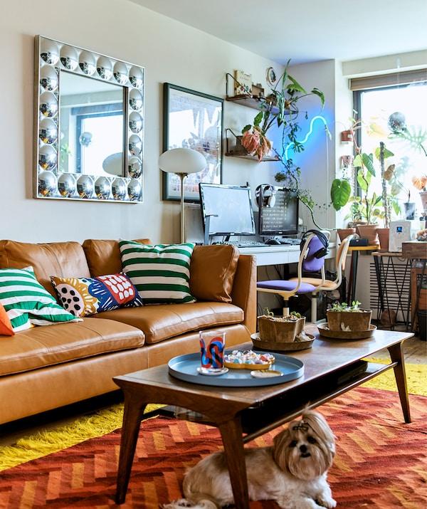 مساحة جلوس ذات تصميم مفتوح مع مساحة عمل، وعرض نباتات، وكنبة جلد عصرية وطاولة قهوة متعددة الاستعمالات.