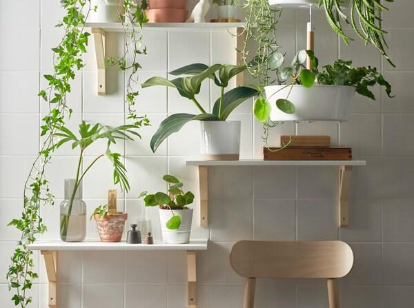 mur-vegetal-interieur-catalogue-IKEA