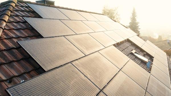 Närbild på ett tak med solpaneler.