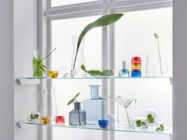 نافذة مع إضاءة تشرق من خلالها، وبعض الرفوف الزجاجية في النافذة تحتوي على زجاجات ومرطبانات زجاجية ونباتات.