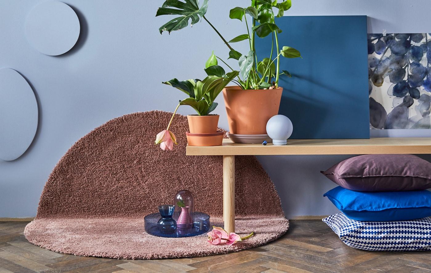 Naturfarbene Bank mit 2 Topfpflanzen, die auf einem rosafarbenen Teppich vor einer blauen Wand steht
