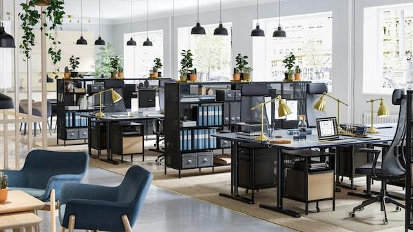 Návrh firemných priestorov od dizajnéra (do 100m2).