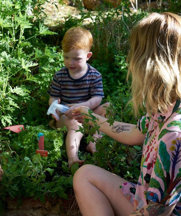 Nici pomaže sinu u zalivanju biljaka bočicom sa sprejem.
