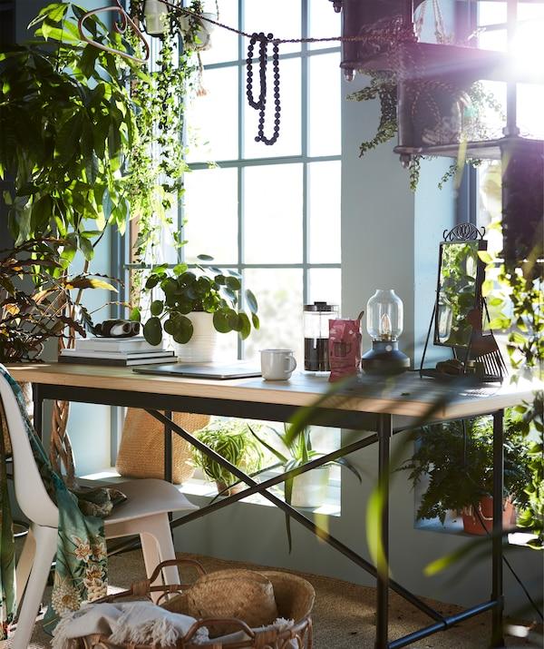 O masă pentru micul dejun cu multe plante în jur, reale și artificiale, ca planta artificială în ghiveci FEJKA.