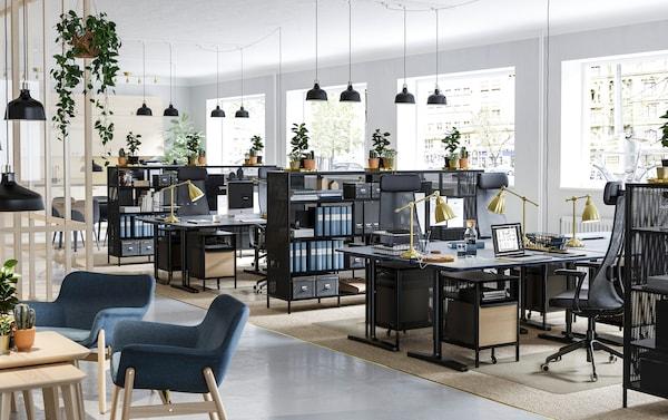Offenes Großraumbüro mit schwarzen IKEA BEKANT Schreibtischen, Regalen & vielen Grünpflanzen