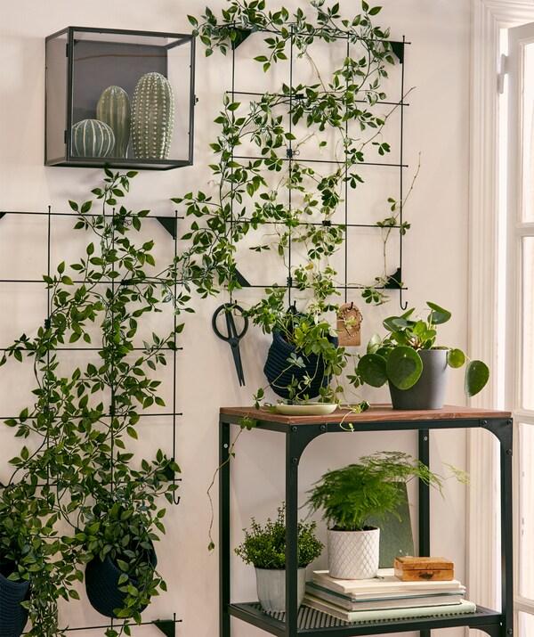 Ogród ścienny stworzony ze sztucznych roślin przymocowanych do drucianej tablicy na notatki, otoczony innymi prawdziwymi i sztucznymi roślinami.