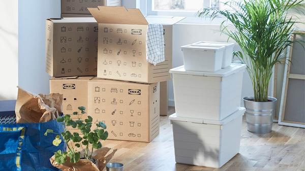 OMBYTE Box mit Küchenequipment und SAMLA Boxen bereit für den Umzug