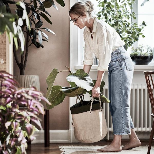 Osvježi izgled svog doma biljkama
