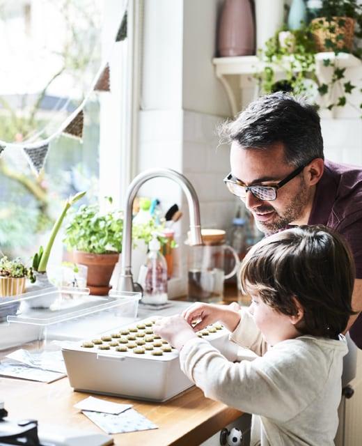 Come coltivare piante in casa con i bambini | IDEE - IKEA