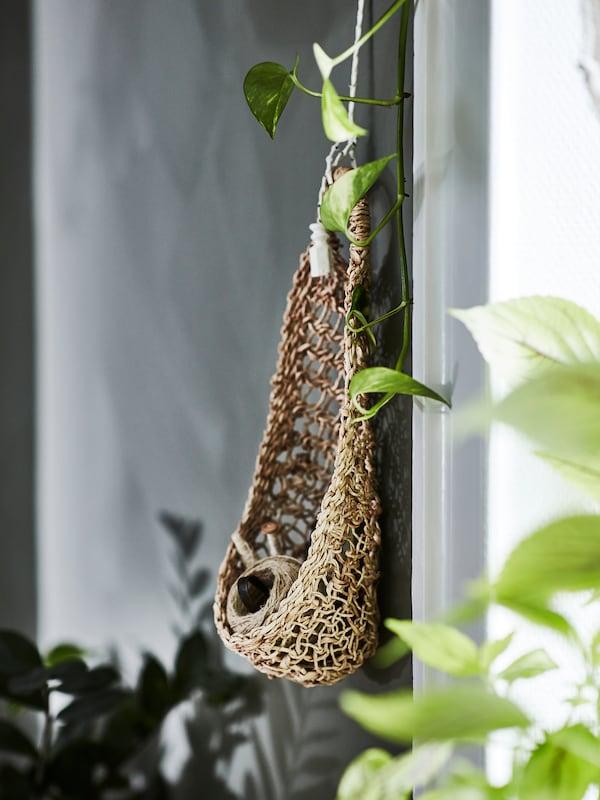 Parede verde cun niño de almacenaxe colgante feito de fibra de plátano, cunha bobina de algodón dentro.