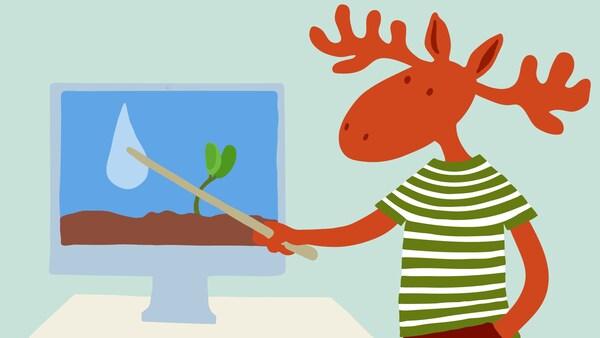 Peták egy képernyőre mutat, amin egy vízscsepp és egy növény látható.