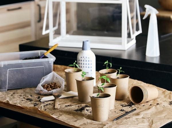petit-balcon-avec-une-table-deux-chaises-et-des-plantes