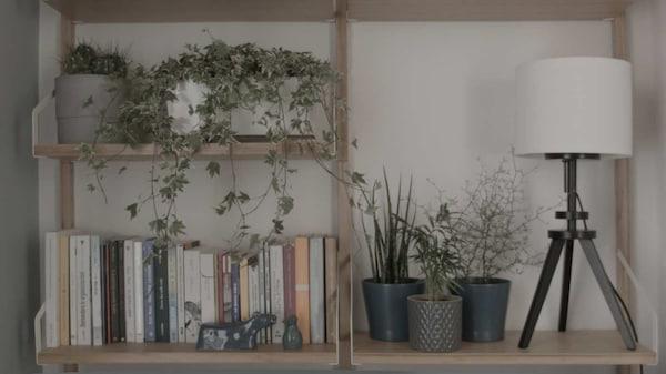 piante e scaffale SVALNAS, Luigi Galimberti - IKEA