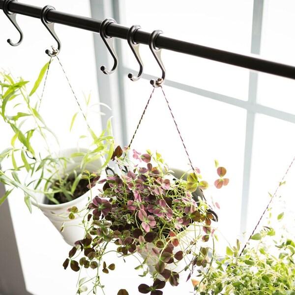 Pienet yrttiruukut roikkuvat keittiön ikkunalla IKEA FINTORP mustalta tangolta.