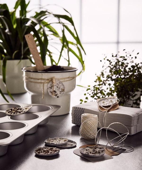 Plantas verdes, semilleros hechos con moldes para magdalenas y un macetero beige para regalar con semilleros caseros alrededor.