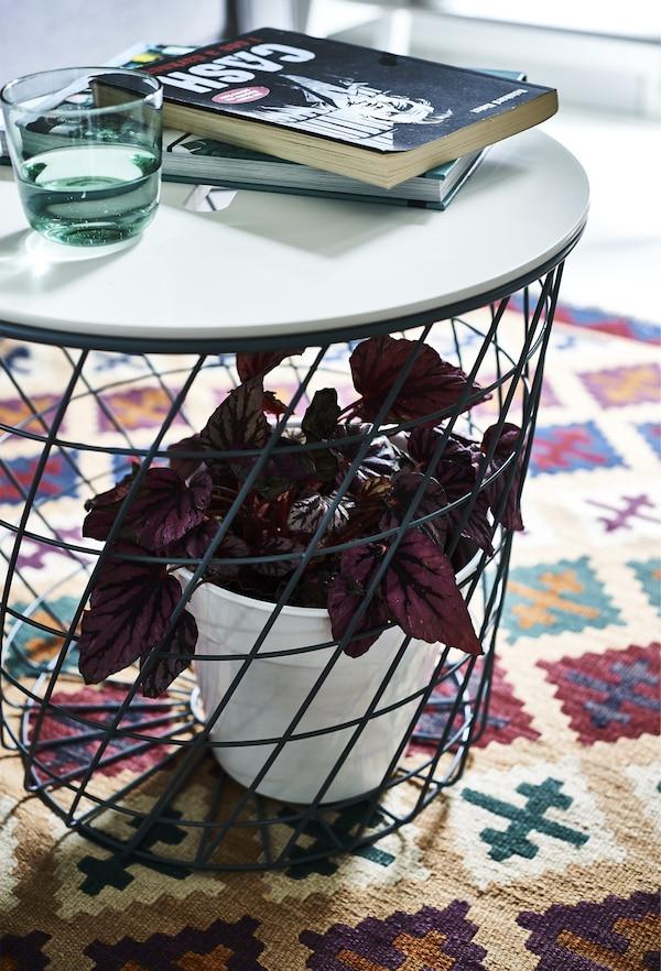 Plante à l'intérieur du pied d'une table basse posée sur un tapis à motifs.
