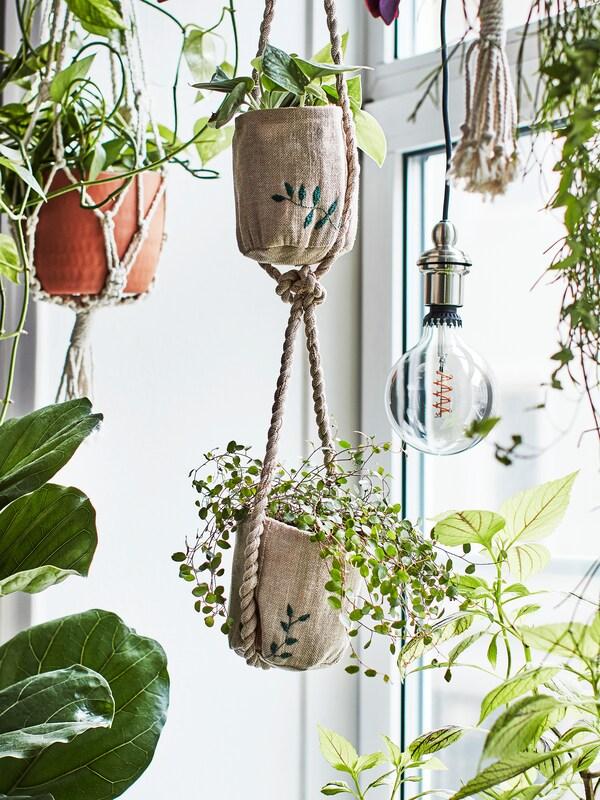 Plantes que creen una jungla urbana en una finestra, amb testos de jute fets a mà amb detalls brodats.